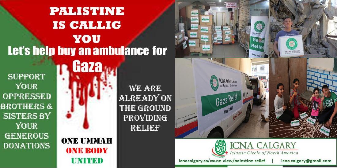 Palestine Relief
